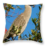 Yellow Crown Night Heron Throw Pillow