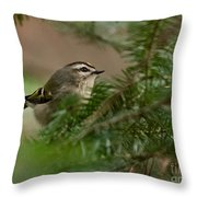 Yellow-crowned Kinglet Throw Pillow