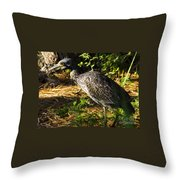 Yellow-crowned Night Heron Eating A Fiddler Crab Dinner Throw Pillow