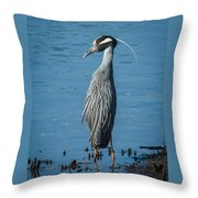 Yellow-crowned Night-heron Throw Pillow