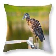 Yellow-crowned Night-heron Portrait Series 3 Throw Pillow