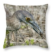 Yellow-crowned Night Heron With Crab Throw Pillow