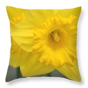 Yellow Daffodil Floral Throw Pillow