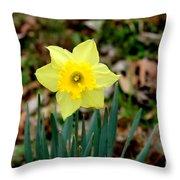 Yellow Daffodil Throw Pillow