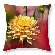 Yellow Dahlia 2 Throw Pillow