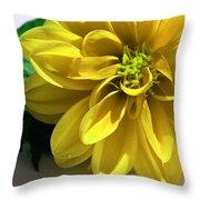 Yellow Dahlia Closeup Throw Pillow