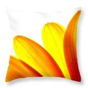 Yellow Daisy Petals Macro Throw Pillow