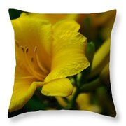 One Day Lily  Throw Pillow