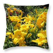 Yellow Daylilies Throw Pillow