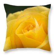 Yellow Delight Throw Pillow