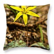 Yellow Dogtooth Trout Lilly Throw Pillow