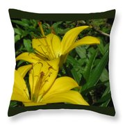 Yellow Easter Lily Throw Pillow