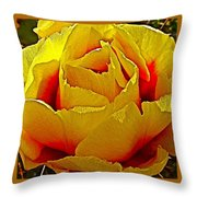 Yellow Engelmann Prickly Pear On Chihuahuan Desert Trail In Big Bend National Park-texas   Throw Pillow