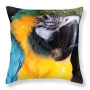Yellow Fellow Throw Pillow