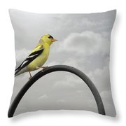 Yellow Finch A Bright Spot Of Color Throw Pillow by Christine Till