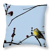 Yellow Finch In Spring Throw Pillow