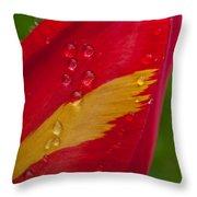 Yellow Flame Throw Pillow