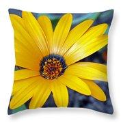 Yellow Flower Helianthus Throw Pillow