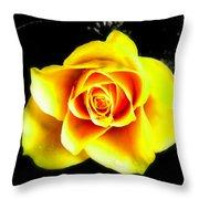 Yellow Flower On A Dark Background Throw Pillow