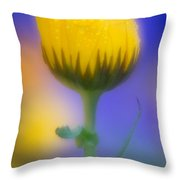 Yellow Flower With Dew Drops Throw Pillow