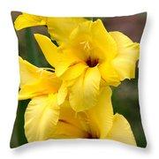 Yellow Gladiolus Throw Pillow