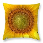 Yellow Glory #1 Throw Pillow
