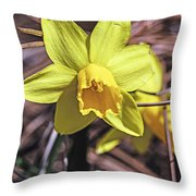 Yellow Glory Throw Pillow