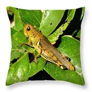 Yellow-green Grasshopper Throw Pillow