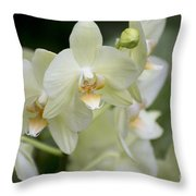 Yellow-green Phalaenopsis 8837 Throw Pillow