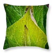Yellow Green Skunk Cabbage Square Throw Pillow