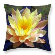 Yellow Hardy Water Lily Throw Pillow