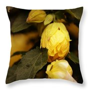 Yellow Hibiscus Late Afternoon Throw Pillow