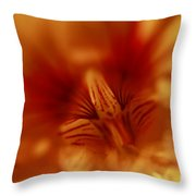Yellow Into Red Throw Pillow