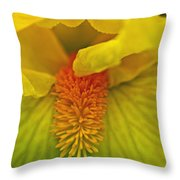 Yellow Iris Beard Throw Pillow