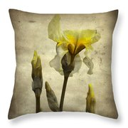 Yellow Iris - Vintage Colors Throw Pillow