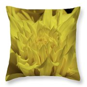 Yellow It Is Throw Pillow