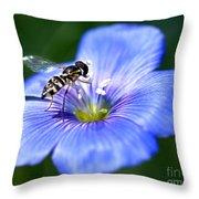 Blue Flax Flower Throw Pillow