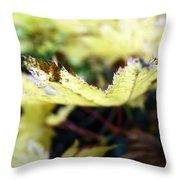 Yellow Japanese Maple Throw Pillow