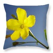 Yellow Jasmine Flower And Bud Against Blue Sky Throw Pillow