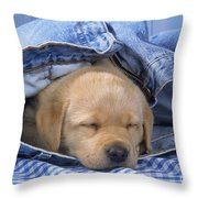 Yellow Labrador Puppy Asleep In Jeans Throw Pillow