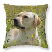 Yellow Labrador Retriever Throw Pillow