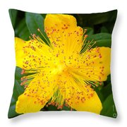 Yellow Lady Pins Throw Pillow