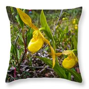 Yellow Lady Slippers Along Emerald Lake Trail In Yoho Np-bc Throw Pillow