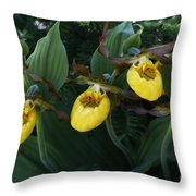 Yellow Lady Slippers On Forest Floor Throw Pillow