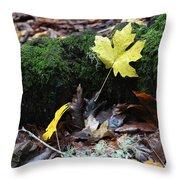Yellow Leaf Throw Pillow