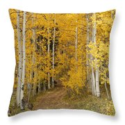 Yellow Leaf Road Throw Pillow