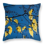 Yellow Leaves And Blue Sky In Autumn Throw Pillow