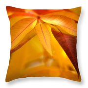 Yellow Leaves At Dawn Throw Pillow