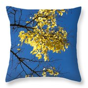 Yellow Leaves In Fall And Deep Blue Sky Throw Pillow