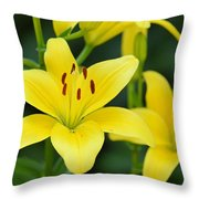 Yellow Lilly 8107 Throw Pillow